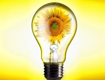http://ecoenergy.dilovamova.com/images/wpi.images/i_000.jpg